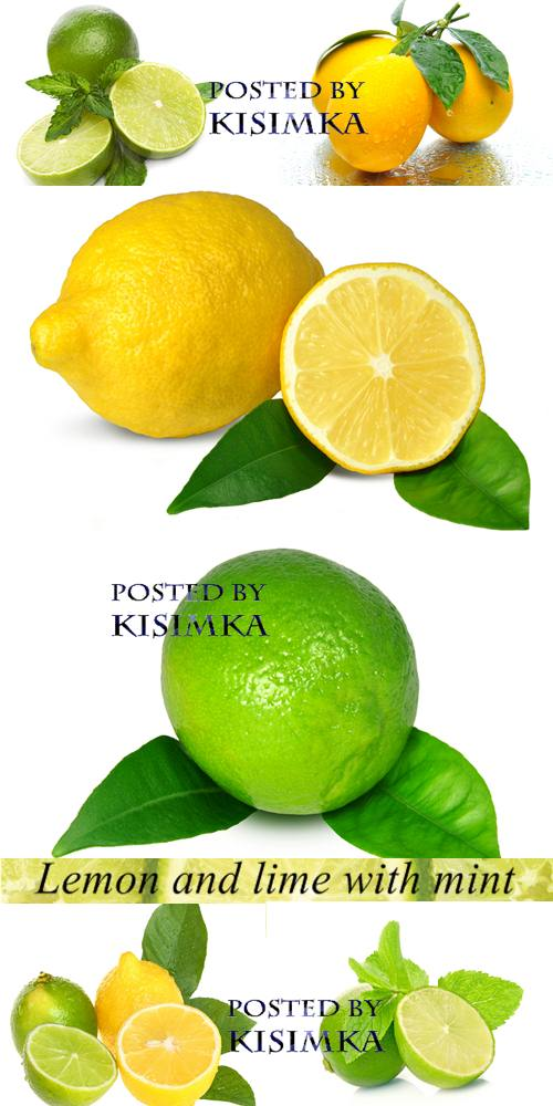 Stock Photo: Lemon and lime with mint