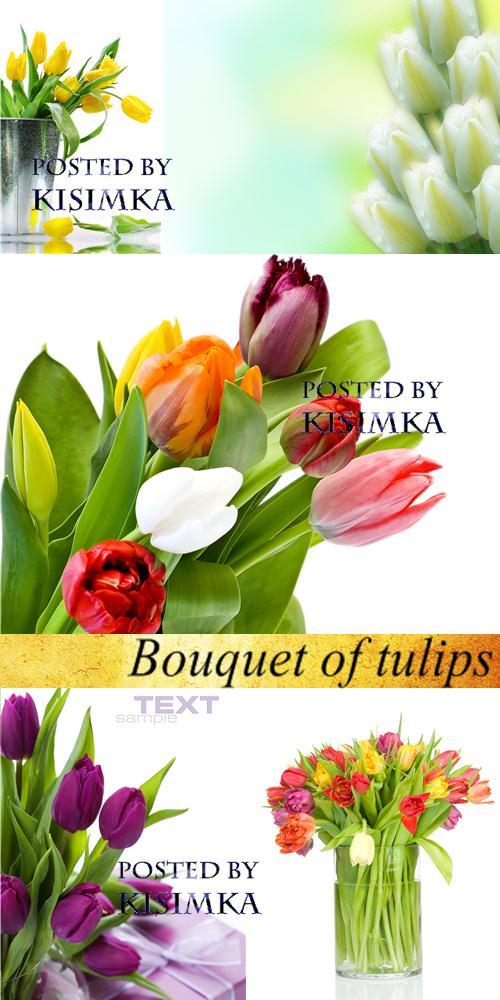 Stock Photo: Bouquet of tulips 2