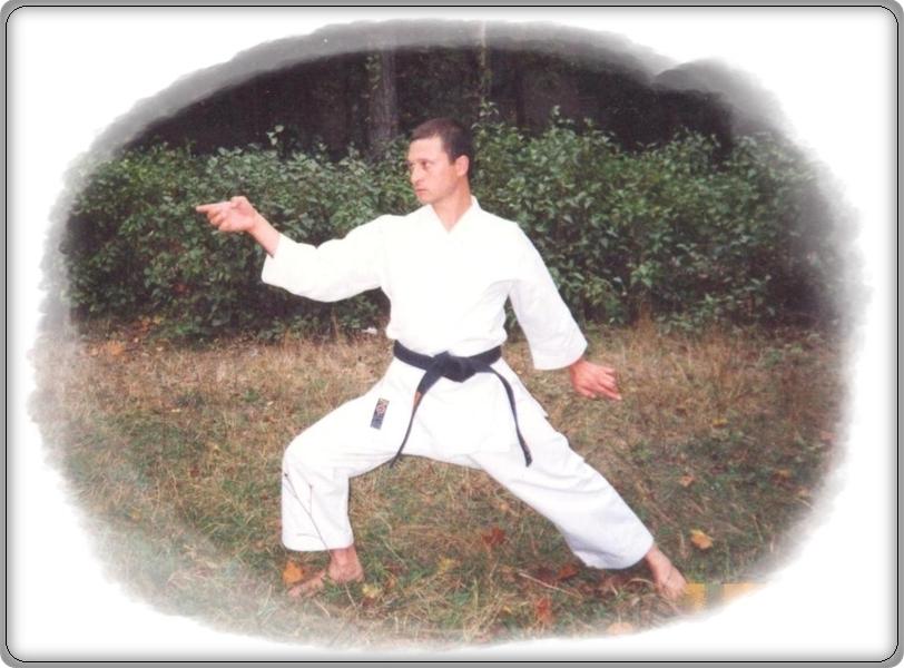 Техника каратэ шотокан