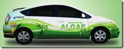 http://images.dailytech.com/nimage/12064_algaeus.png