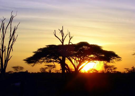 African Landscape Best Wallpaper