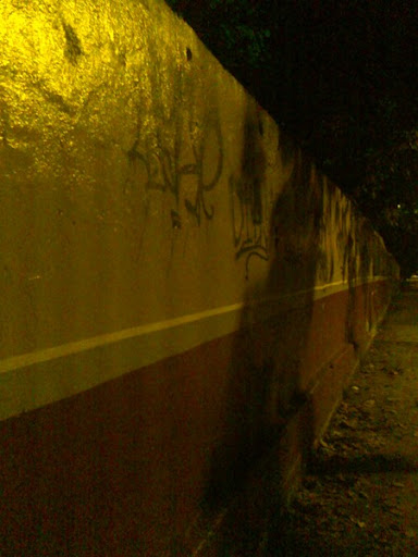Pared del Conopoima en la noche de La Lagunita (El Hatillo, Caracas, Venezuela)