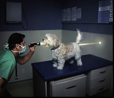 full checkup