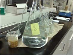 Figure 14 - Polytox Test Setup