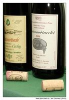 Česká vína