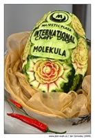 chefday_molekula