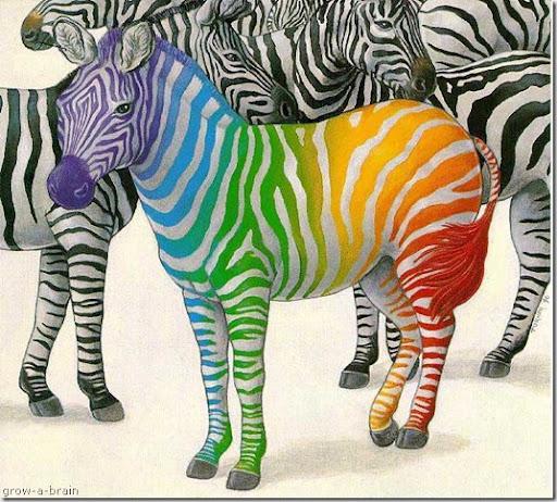 rainbow zebra nails Zebra print - photobucket Color zebra print myspace