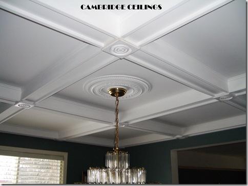 Cambridge Ceilings 1