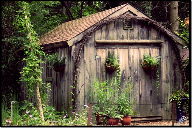 garden_shed_flickr_12