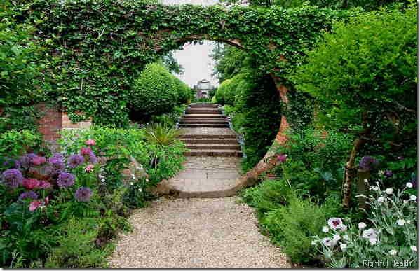 a_gardenweb_Garden_Galleries rightful health