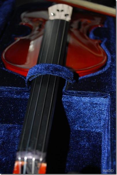 violin 8 neck
