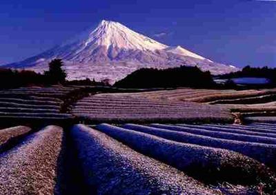 صور جبل فوجي