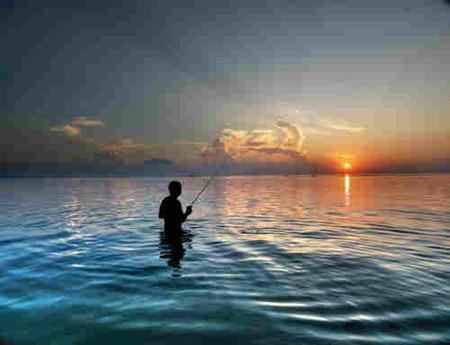 صور جزيرة كوساموي تايلاند