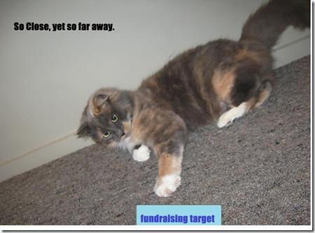 fundrasing target lol