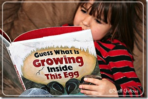 whats in the egg