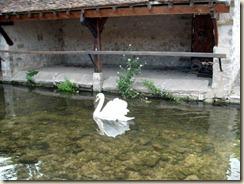 lavoir de Pont de Loutre 22-07-2010 22-27-53