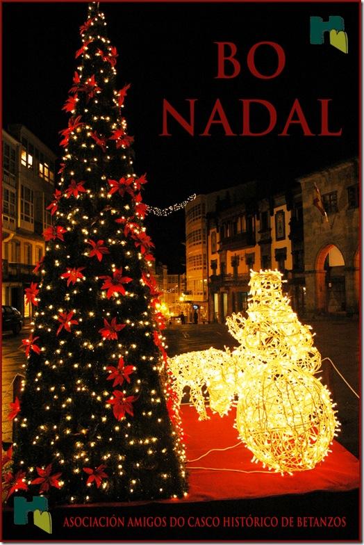A Asociación Amigos do Casco Histórico de Betanzos, deséxavos un Bo nadal e un venturoso ano 2010 a todos.
