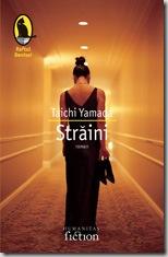 straini-3854