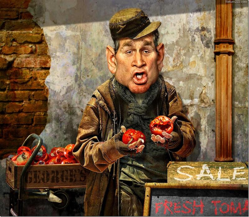 fresh_tomatoes_by_rwpike-d2zr0nf