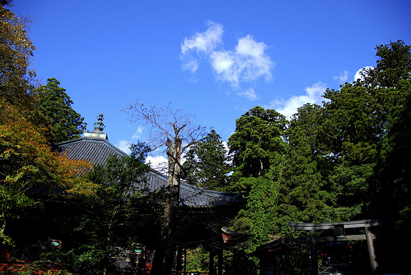 The first buildings of the Rinnoji Temple area