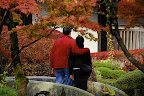 A Japanese couple takes in the autumn foliage in Nikko