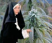 Greek Orthodox Nun