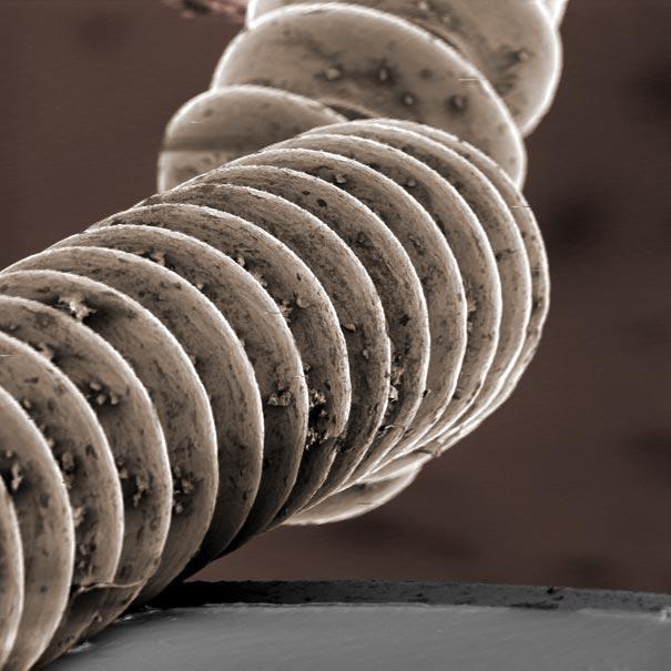 عالم المجهريات Looking-at-the-World-through-a-Microscope-guitar-string.jpg