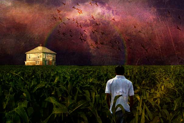 http://lh6.ggpht.com/_9F9_RUESS2E/Sy7GnBzTGJI/AAAAAAAAB7E/J2gPyBF-Ulg/s800/13-Interesting-Facts-about-Dreams-cornfields.jpg