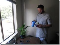 Plants 005