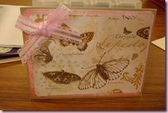 Janice's butterflies