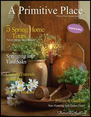 APPSPRING2011COVER