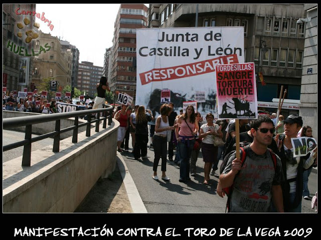 Manifestaciones contra el Toro de la Vega 2009 IMG_2341
