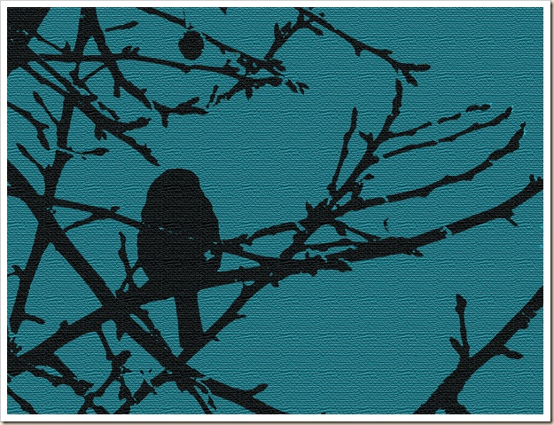 Bird Back Berry DigPaper