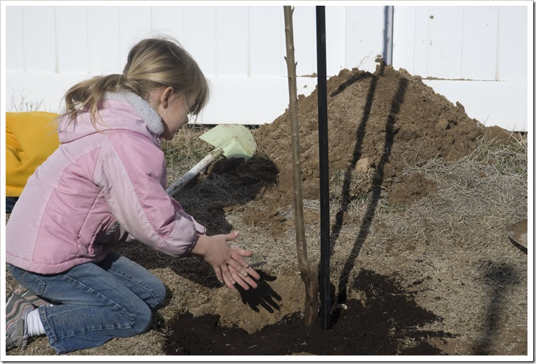 Maddy Planting