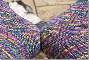 CHRISTOPHER'S SOCKS 317
