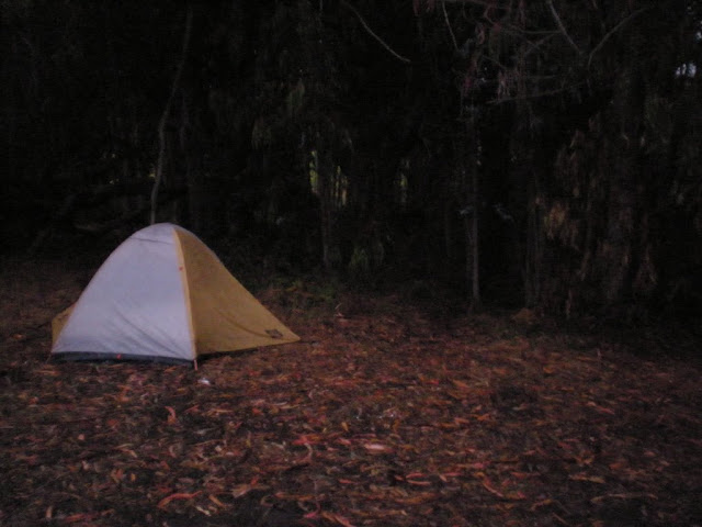 Worst camping experience of the trip yet... wet, sandy, disgusting.