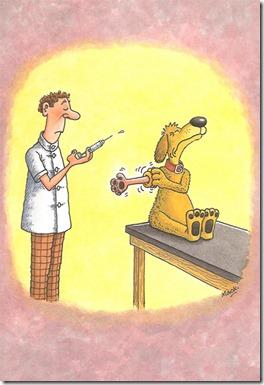 3  veterinären