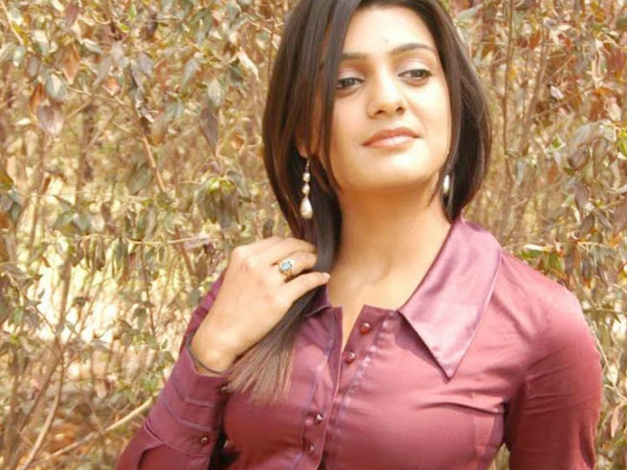 tashu kowshik new tolly shoot actress pics
