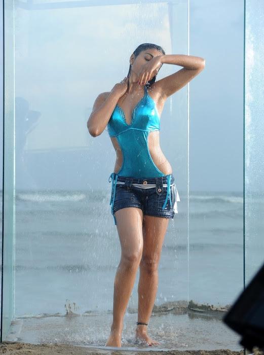 hq of shriya from pista no watermarks hot photoshoot