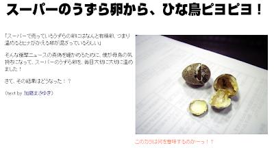 スーパーのうずら卵ピヨピヨの実験の矛盾考える。