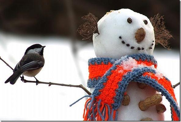 snowman-main_Full