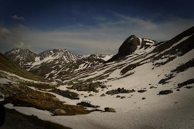 Swiss-Alps-7.jpg