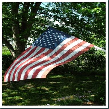 US-Flag10510