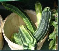 zucchini basket 0709