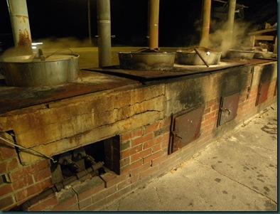 lobsters cooking (2)