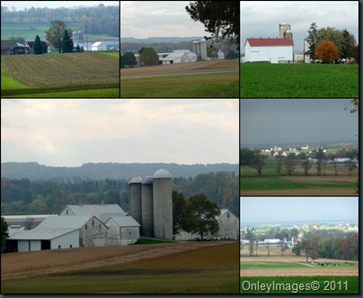 farms collage102510