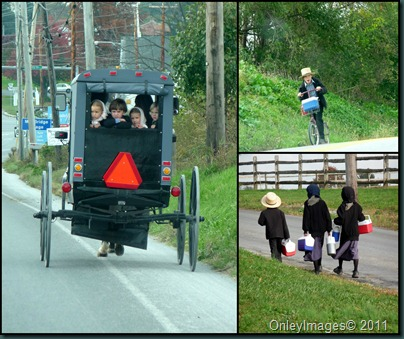 amish kids collage