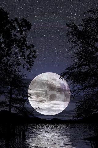 Night Lake Moon Background iPhone Wallpaper