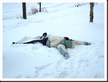 Winter Storm Jan 2010 014
