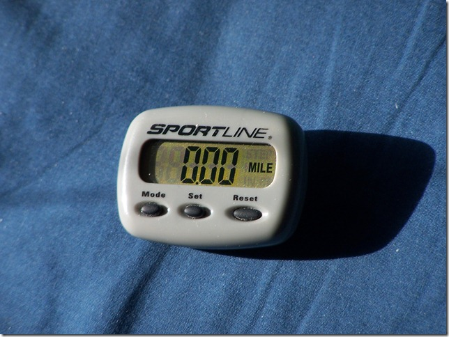 Cheap pedometer